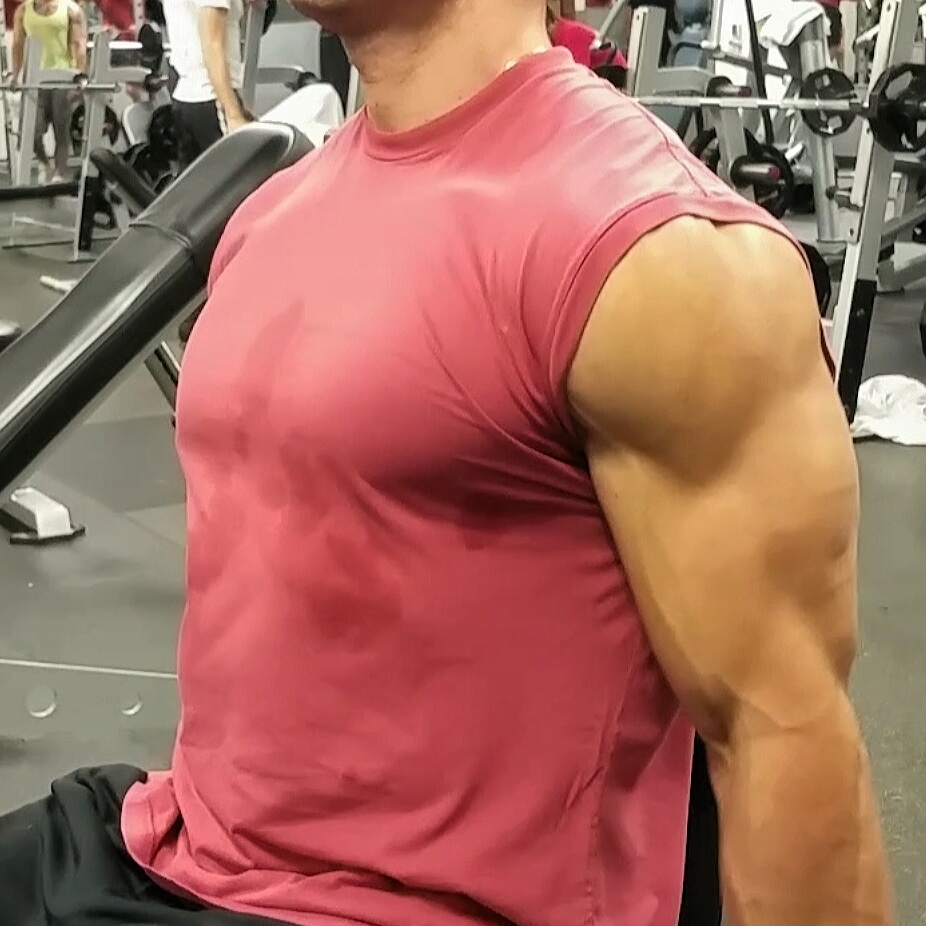 Why do muscle  gains slow down over time and how can we speed it back up?