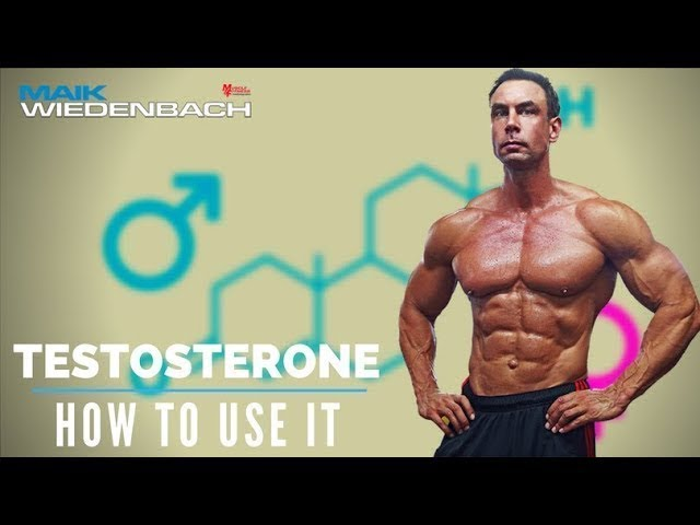 Testosterone – all you need to know