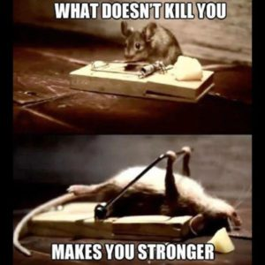 16 What Does Not Kill You Motivational Meme 300x300